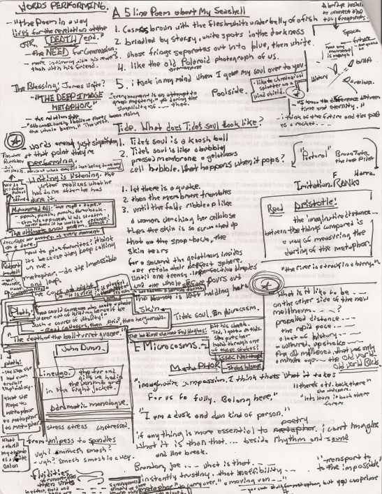 Tide + My Seashell + Poetry- Metaphor