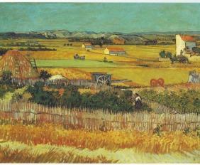 Vincent_Van_Gogh_0019